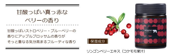 キッピス(kippis)トリートメントワックス|甘酸っぱい真っ赤なベリーの香り