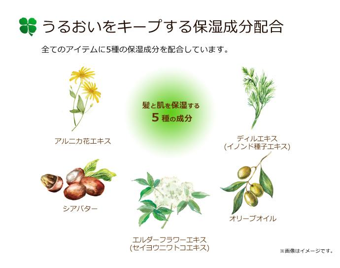 うるおいをキープする保湿成分配合|アルニカ花エキス、シアバター、エルダーフラワーエキス、ディルエキス、オリーブオイル