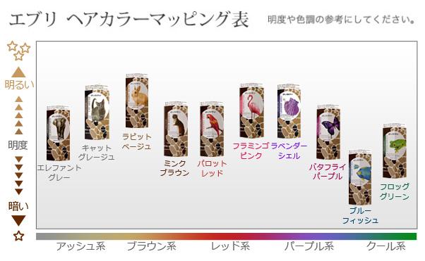 エブリヘアカラー マッピング表