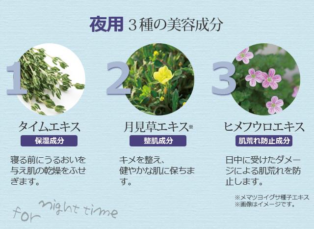 夜用3種の美容成分:タイムエキス/月見草エキス/ヒメフウロエキス