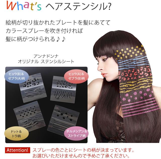 絵柄が切り抜かれたプレートを髪にあててカラースプレーを吹きつければ髪に柄がつけられる